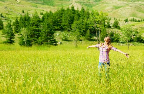 Need a Break from Technology? Top 5 Tech-Free Activities To Do